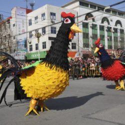 will China crow